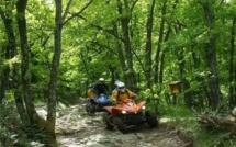 Rodéos, vitesse, nuisances... Les adeptes du tout-terrain sanctionnés en forêt de La Londe et du Rouvray