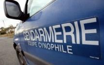 Disparue d'une maison de retraite, la septuagénaire est retrouvée par les gendarmes au fond d'un fossé