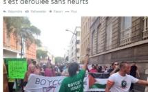 1 600 manifestants en Seine-Maritime pour soutenir le peuple palestinien
