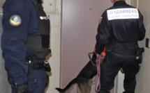 Un réseau de drogue démantelé entre les Andelys et Gaillon : six trafiquants présumés en prison