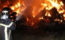 Quatre incendiaires, soupçonnés d'une série de faits autour de Dieppe, arrêtés par la gendarmerie