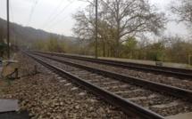 Yvelines : un homme tué par un train en gare de Mantes-la-Jolie
