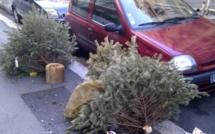 Que faire du sapin de Noël usagé ? Les conseils à suivre si vous habitez l'agglomération du Havre