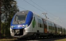 Yvelines : les trains stoppés à cause d'un feu aux abords des voies à Achères
