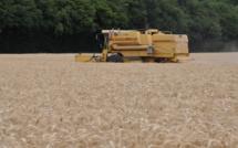 Feux de récoltes : le préfet de l'Eure impose des obligations aux cultivateurs