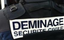 Seine-Maritime : les démineurs appelés en pleine nuit pour un sac à main suspect dans un train