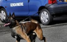 Eure : le détenu en cavale repris par les gendarmes est condamné à 10 mois de prison ferme