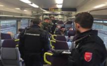 """Opération de sécurité dans les trains entre Dieppe et Auffay : un """"sans-papiers"""" placé en rétention"""