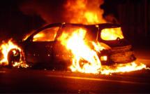 Oissel : l'incendiaire d'un véhicule stoppé dans sa fuite par Goliath, le chien de la brigade canine