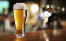 Rouen : vente et consommation d'alcool interdites sur le site des concerts gratuits. Les chiens aussi